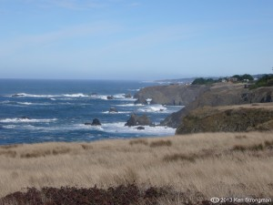 FAQ_Mediation Mendocino 03 opinion