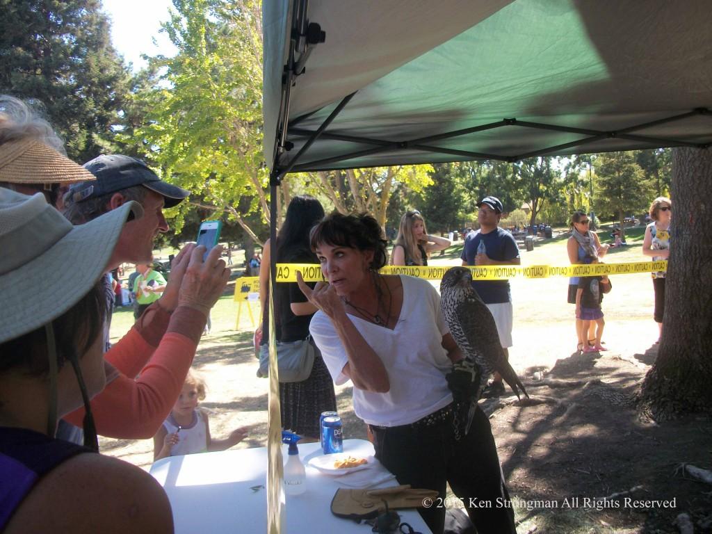Bird Demonstration at Lindsay Wildlife Experince 60th Birthday Bash at Larkey Park Walnut Creek, CA